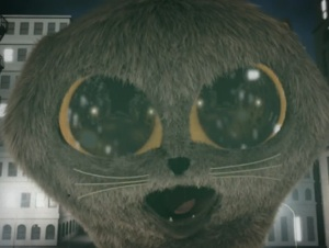 161-cat2