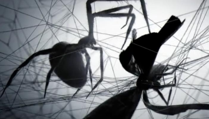 Polynoid REEL 2012 on Vimeo