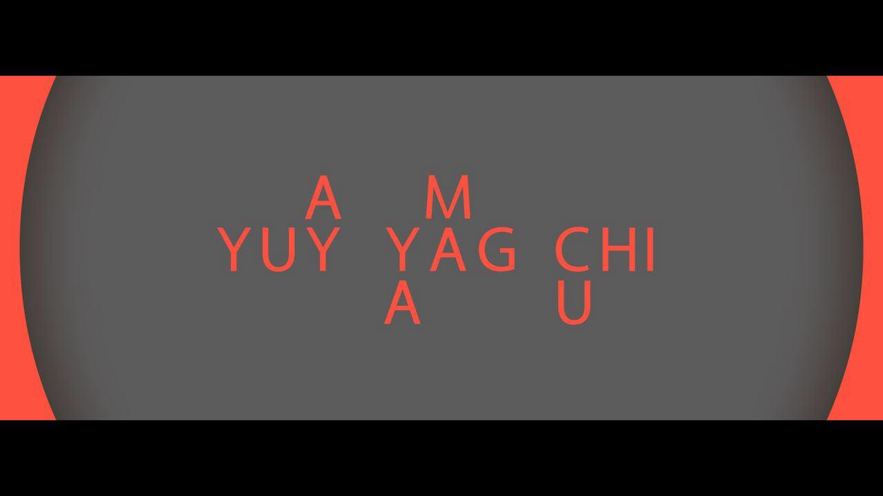 Yuyayamaguchi Montage 2012
